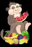 Lopburi monkey static