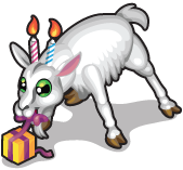 Birthday candle goat single