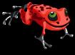 Red poison dart an