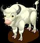 Albino Bison single