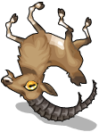Alpine ibex an