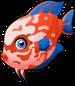 Discus fish single