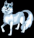 Arctic fox new static