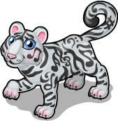 Music tiger single