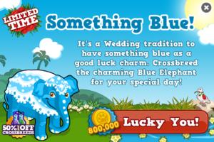 Blue elephant modal