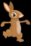 Cottontail rabbit an