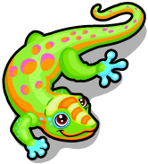 Gold dust day gecko single