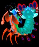 Mantis shrimp static