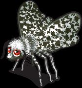Peppered moth single