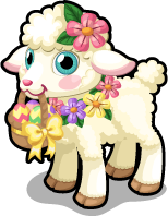 Basket lamb single
