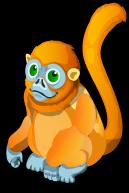 Golden Snub-Nosed Monkey single