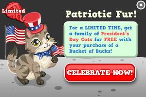 Presidents day cat modal