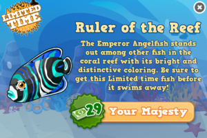 Emperor angelfish modal