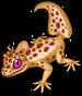 Leaf tailed gecko single