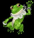 Lace bullfrog an