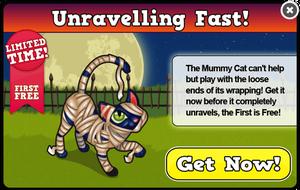 Mummy cat modal