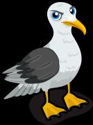 Seagull single
