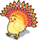 Sunrise peacock single