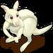 Albino Kangaroo single