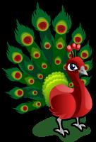 Christmas peacock singlel