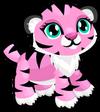 Cubby tiger primrose single