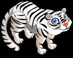 White Siberian Tiger single