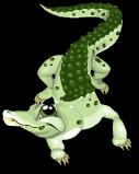 Dwarf crocodile an