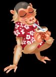Luau monkey an