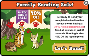Autumn bonding sale modal