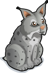 Lynx single