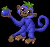 Blueberry monkey single