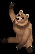 Kodiak bear an