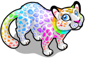 Rainbow leopard single