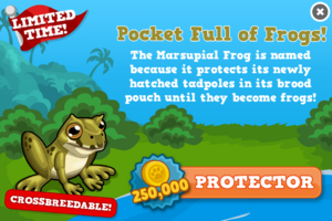 Marsupial frog modal