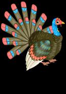 Thanksgiving turkey1 an