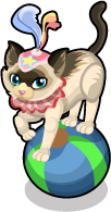 Balancing Kitty single