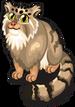 Pallas cat single