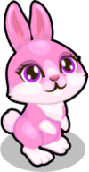 Cubby bunny love single