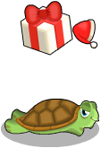 Gift turtle an