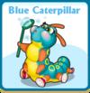 Blue caterpillar card