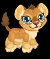 Cubby lion common single