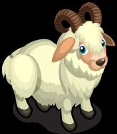 Billy Goat single