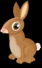Cottontail rabbit static