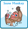 Snow monkey card
