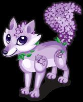 Wisteria fox single
