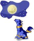 Midnight wolf an