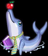 Teacher dolphin single