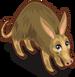 Aardvark single