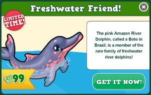 Amazon river dolphin modal