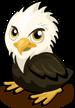 Eaglet single